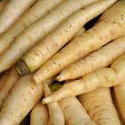 CAROTTES BLANCHES 1KG